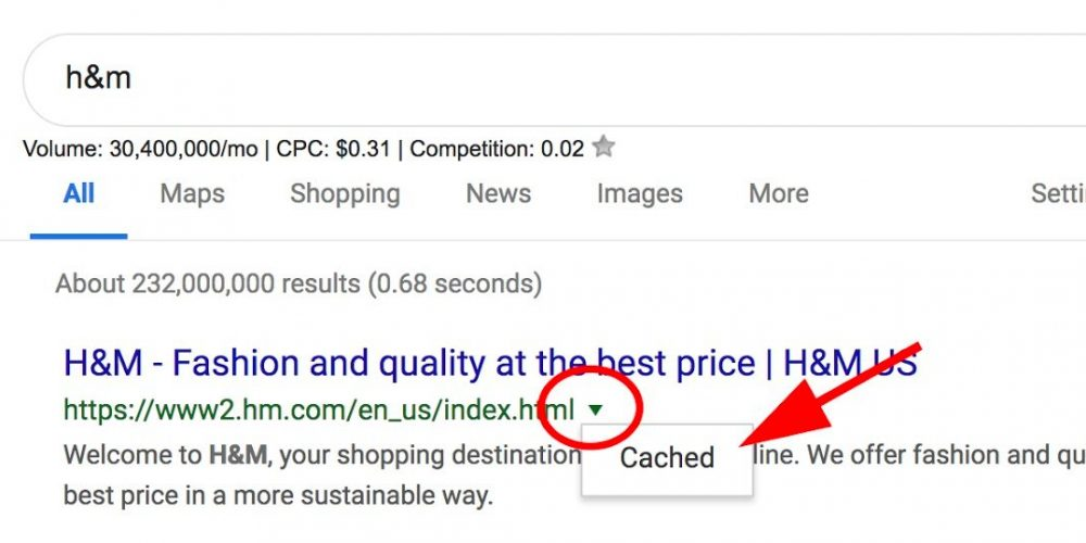 Google Cache: How to View Cached Pages