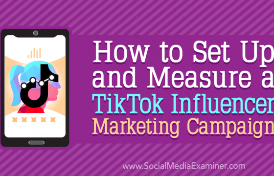 How to Set Up and Measure a TikTok Influencer Marketing Campaign